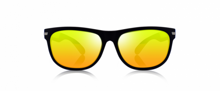 Polarized PPE +08 REVO ?>
