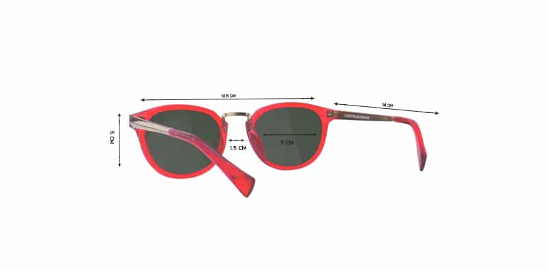 Sunglasses PPS17
